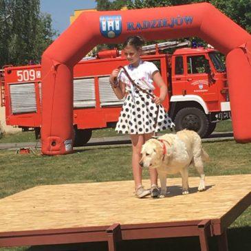 Wystawa psów nierasowych w Radziejowie 2016